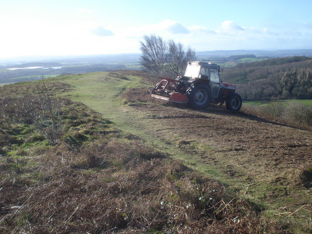File:Scrub clearance on Chase End Hill - geograph.org.uk - 734529.jpg