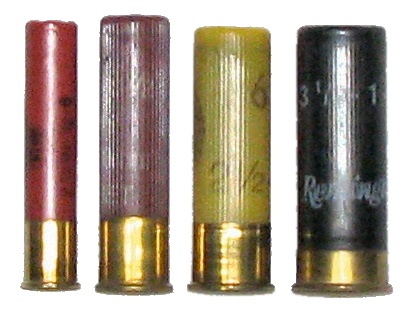 File:Shotgun shell comparison.jpg - Wikipedia