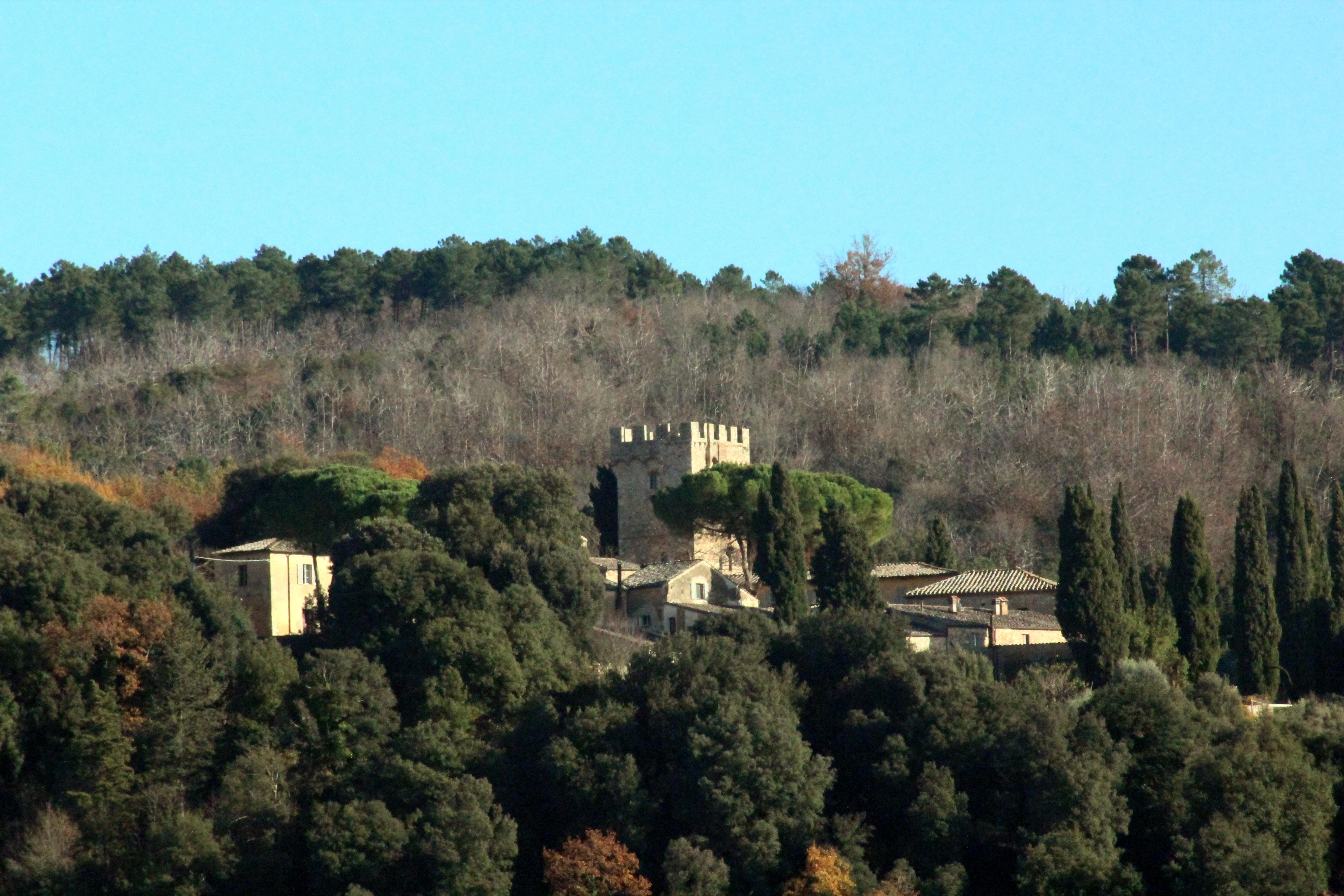 Sovicille, Il Castello di Montarrenti