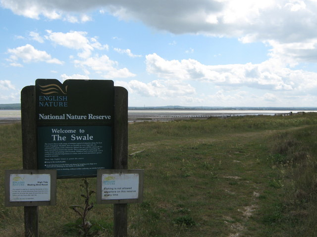 Swale Nature Reserve - geograph.org.uk - 1312065