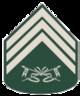 Terceiro-Sargento.png