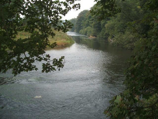The River Wear - geograph.org.uk - 247444
