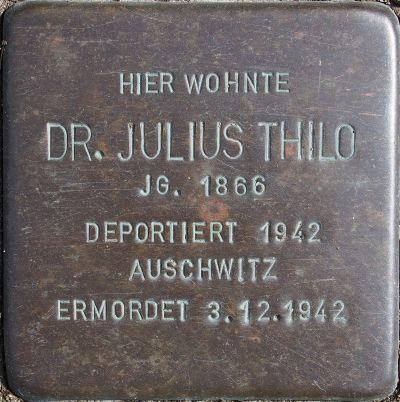 Thilo Julius.jpg
