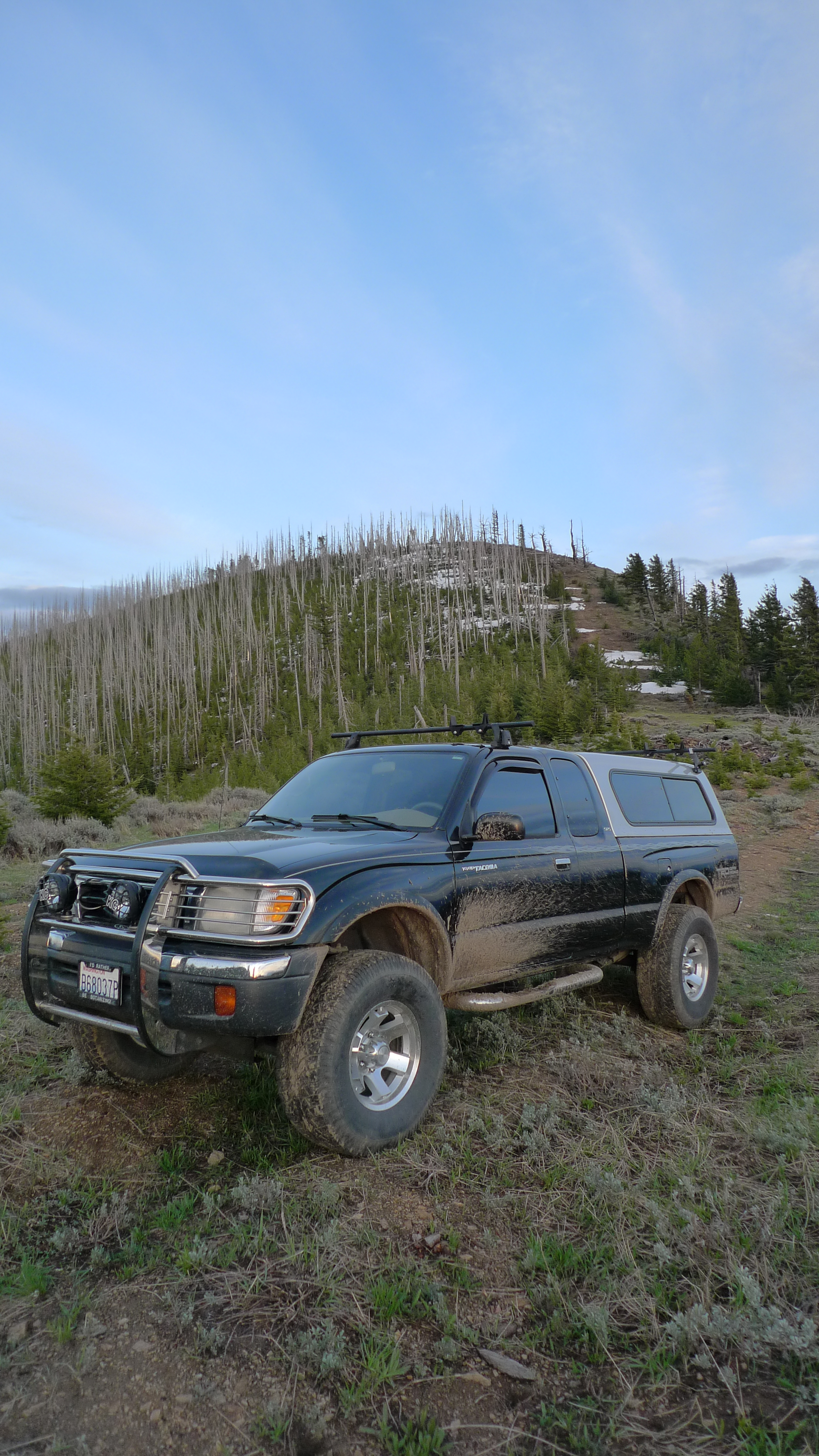 File:Toyota Tacoma 1999 on Chumstick Mountain Chelan County