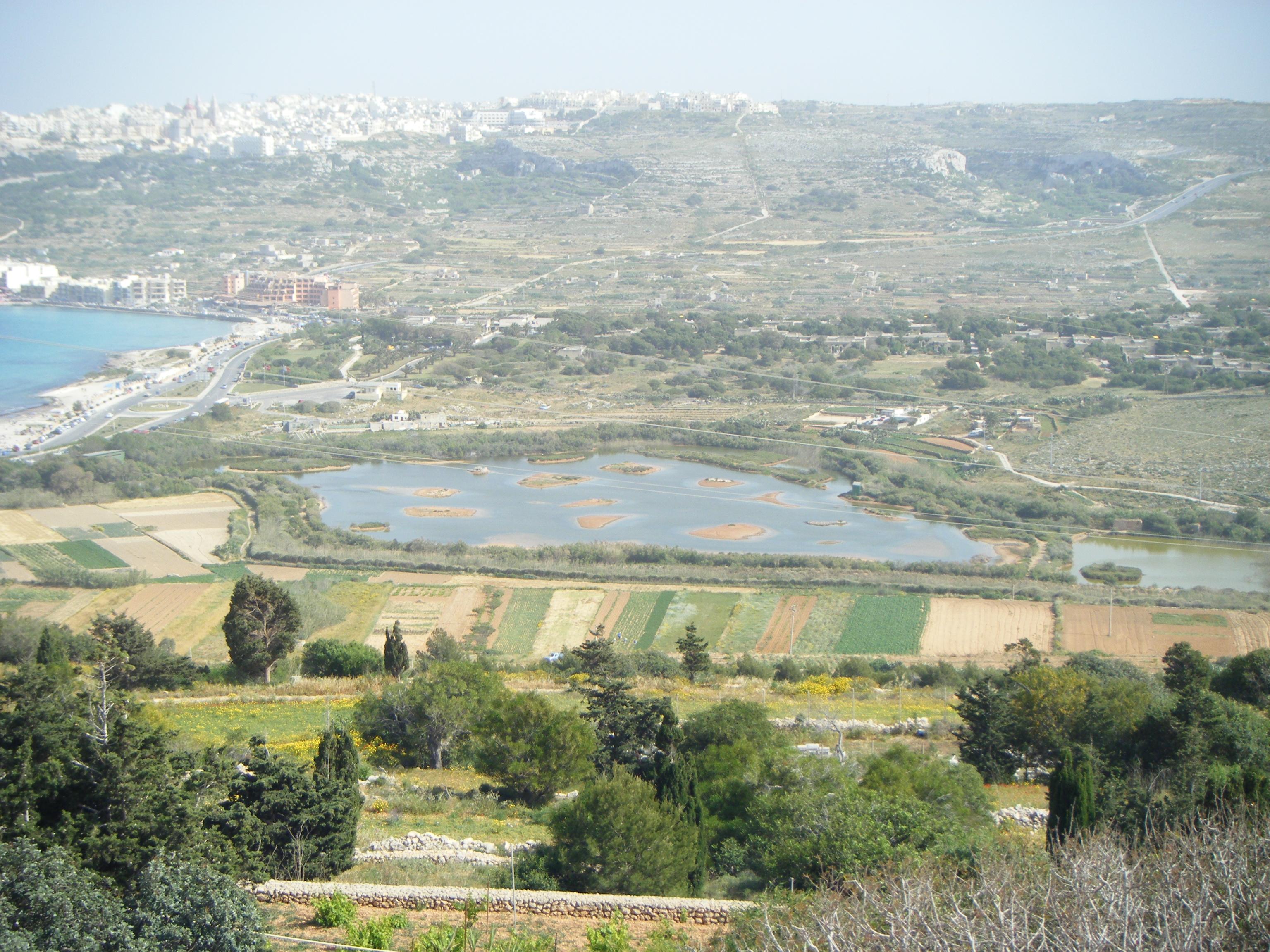 Blick vom St. Agatha's Tower auf das einzige Naturschutzgebiet der Insel. Am linken Bildrand Mellieħa Bay, dahinter Mellieħa