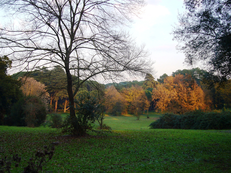 Parco Villa Ada Roma