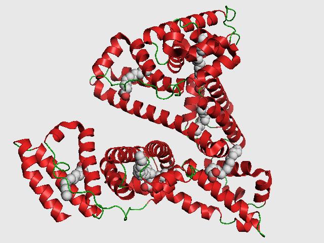 Albumin molecule
