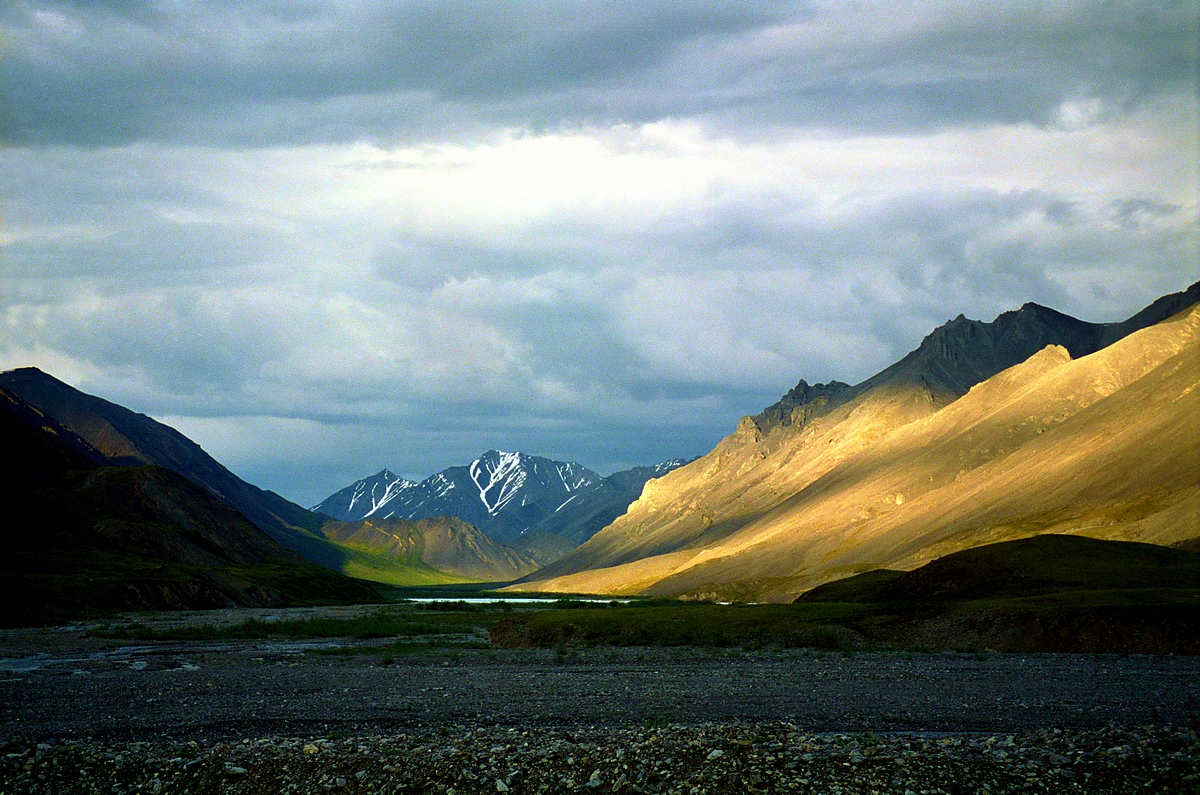 unemployment and arctic national wildlife Should we drill in the arctic national wildlife refuge an economic perspective matthew j kotchena,b,c,,  in alaska's arctic national wildlife refuge (anwr) the rising price of oil, terrorism, turbulence in the  it the arctic national wildlife refuge more importantly.