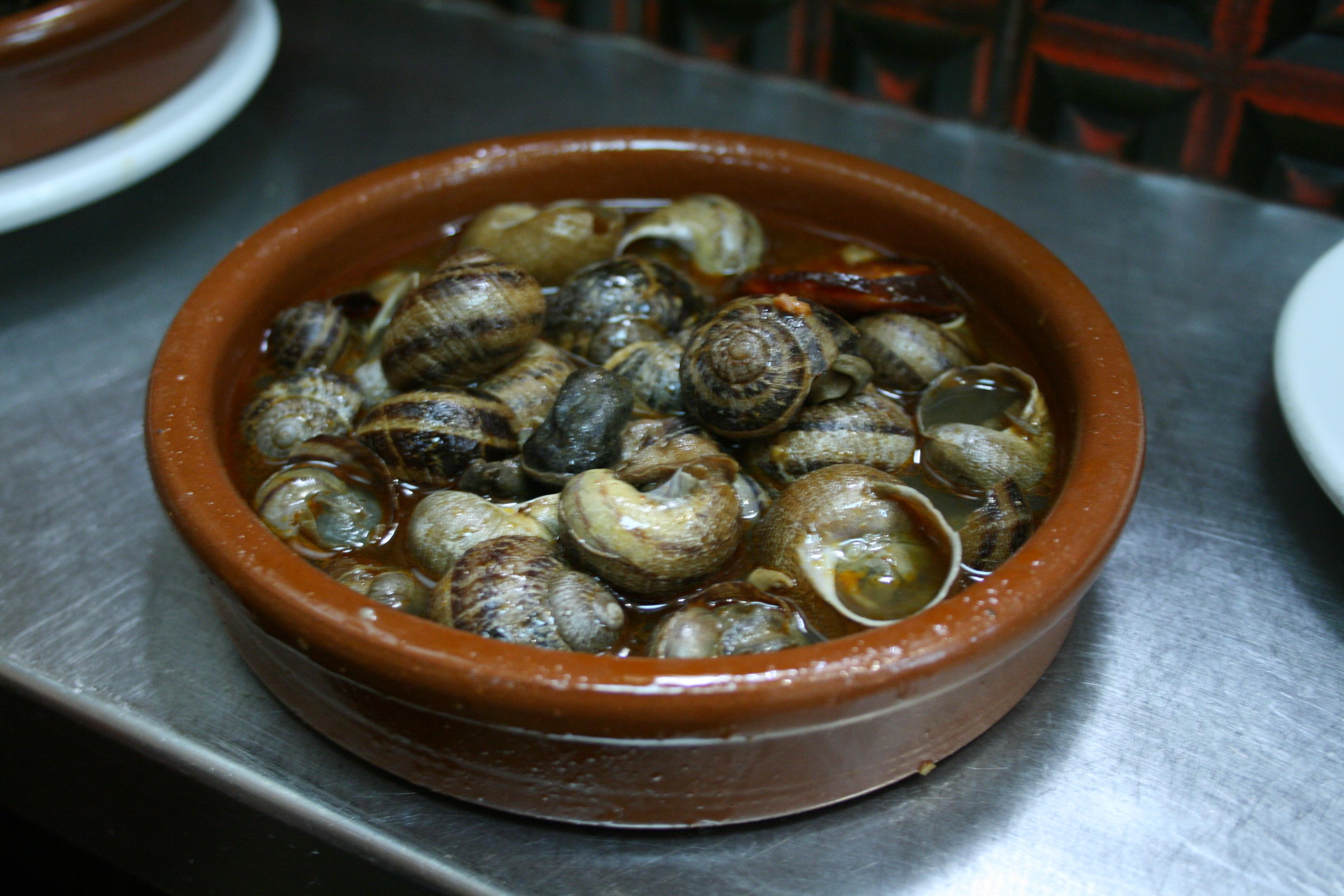 Como Se Cocinan Los Caracoles | Caracoles A La Madrilena Wikipedia La Enciclopedia Libre