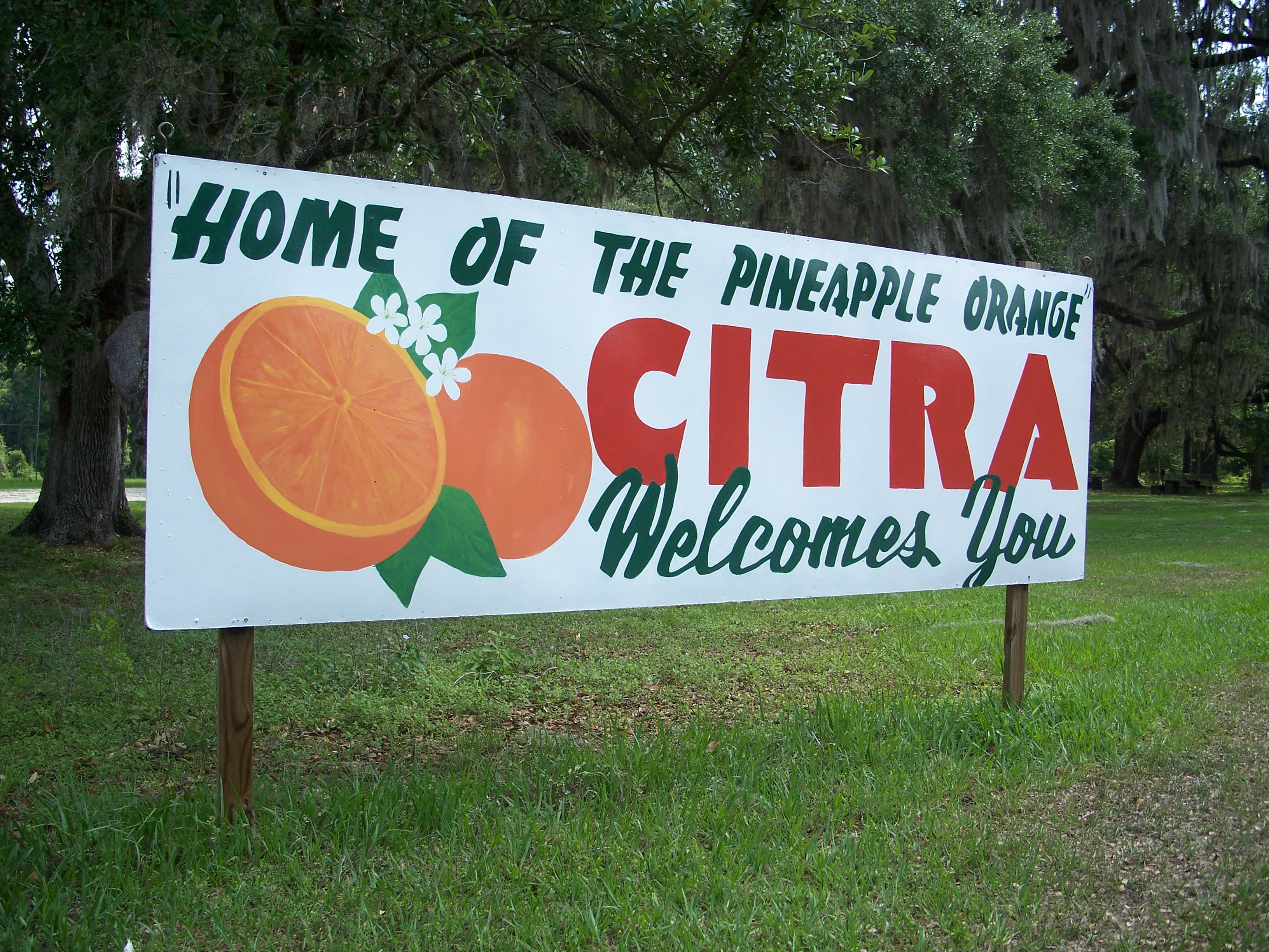 Citra Florida Wikipedia