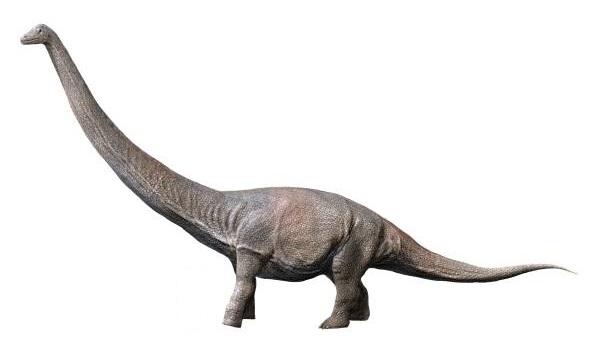 Größter Dinosaurier