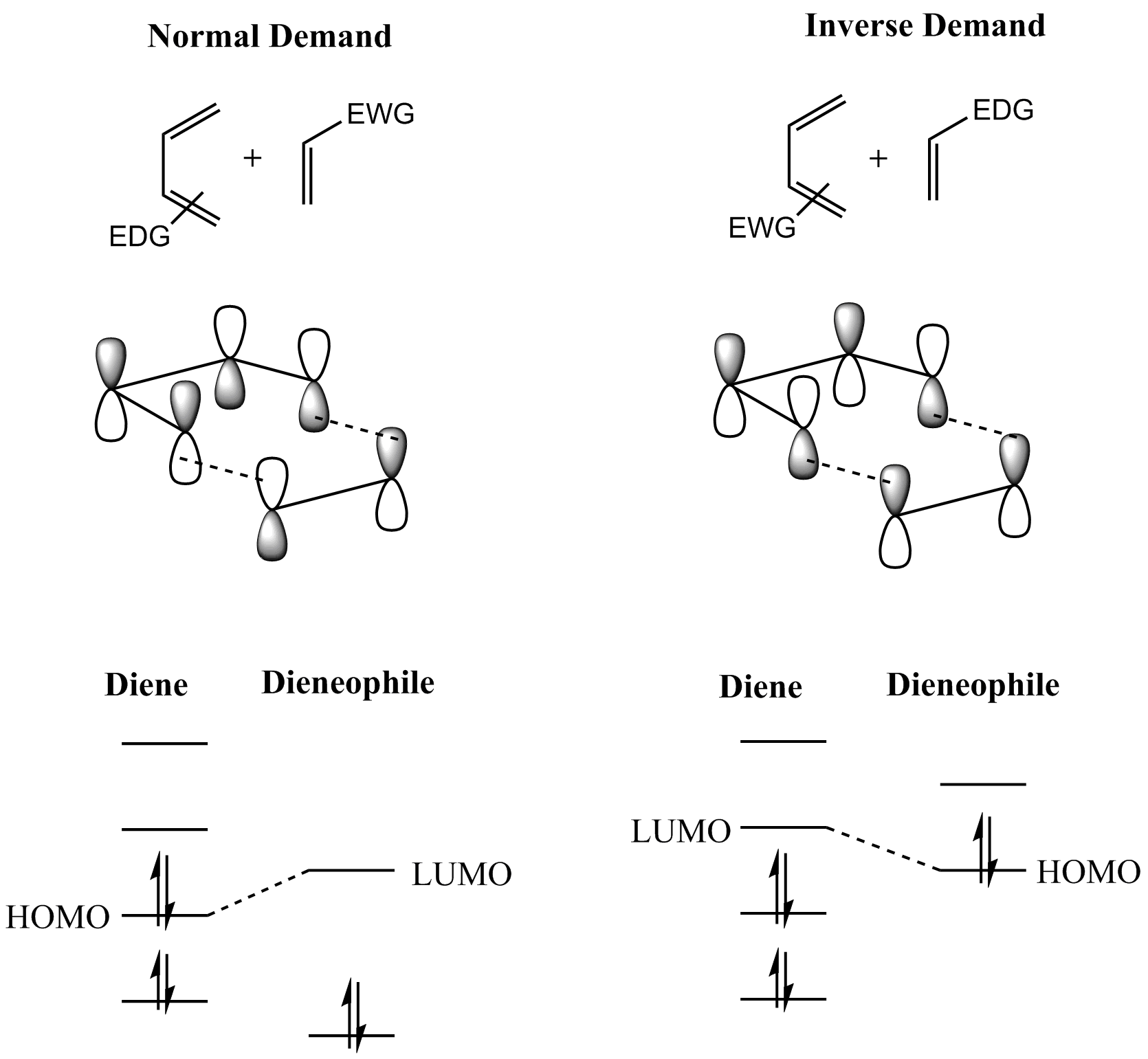 diels alder The retro diels-alder reaction (rda) is the microscopic reverse of the diels-alder reaction—the formation of a diene and dienophile from a cyclohexene it can be accomplished spontaneously with heat, or with acid or base mediation.