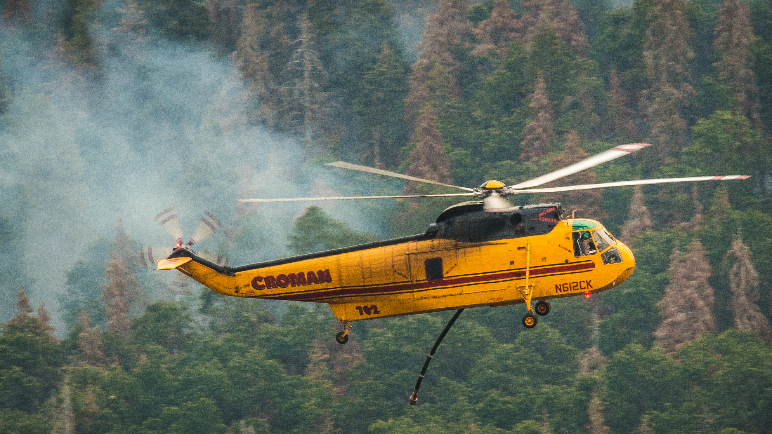 A yellow fire fighting helicopter flies against a background of smoke, and living and dead trees, which have not yet been burnt.