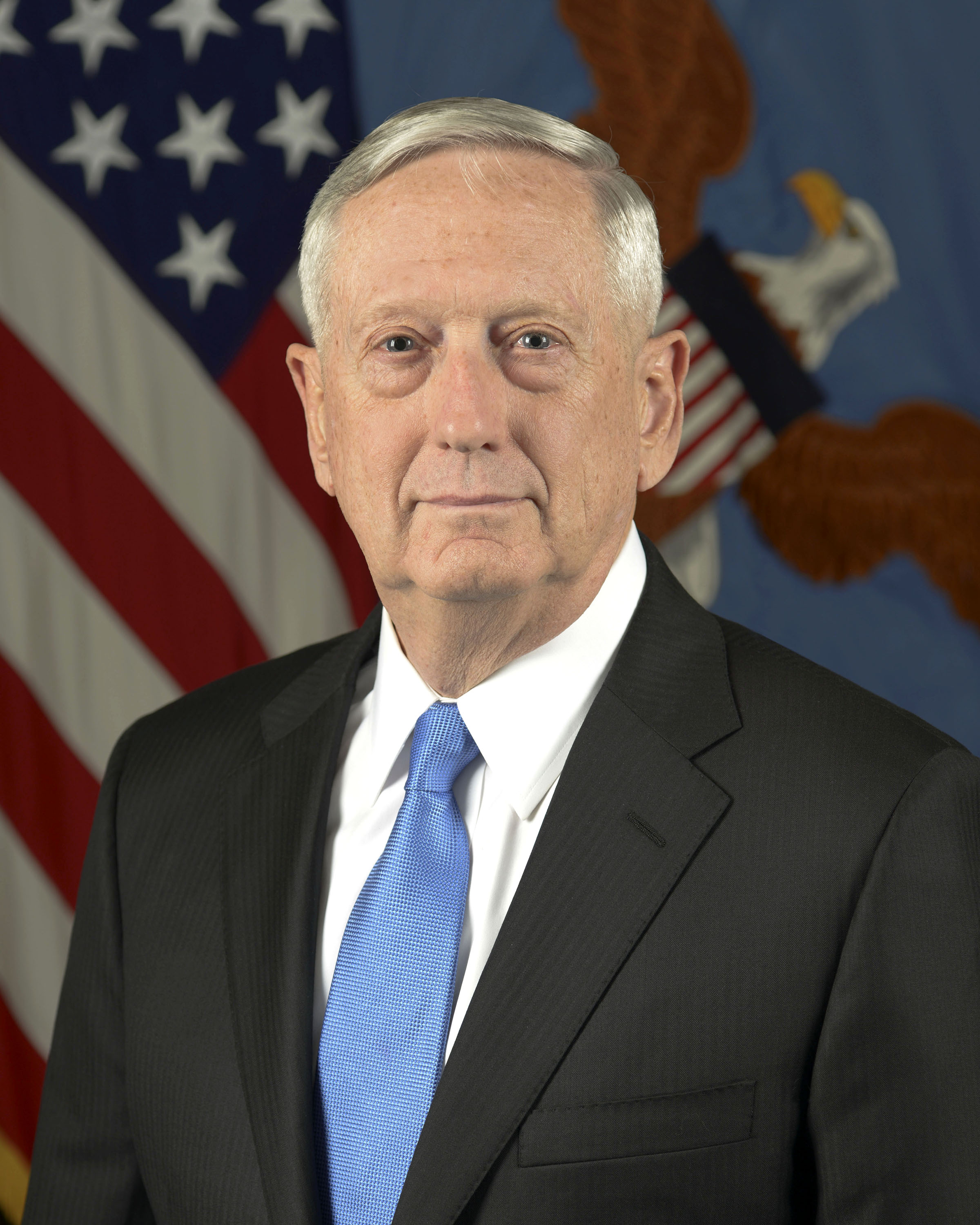 Image result for james mattis defense secretary