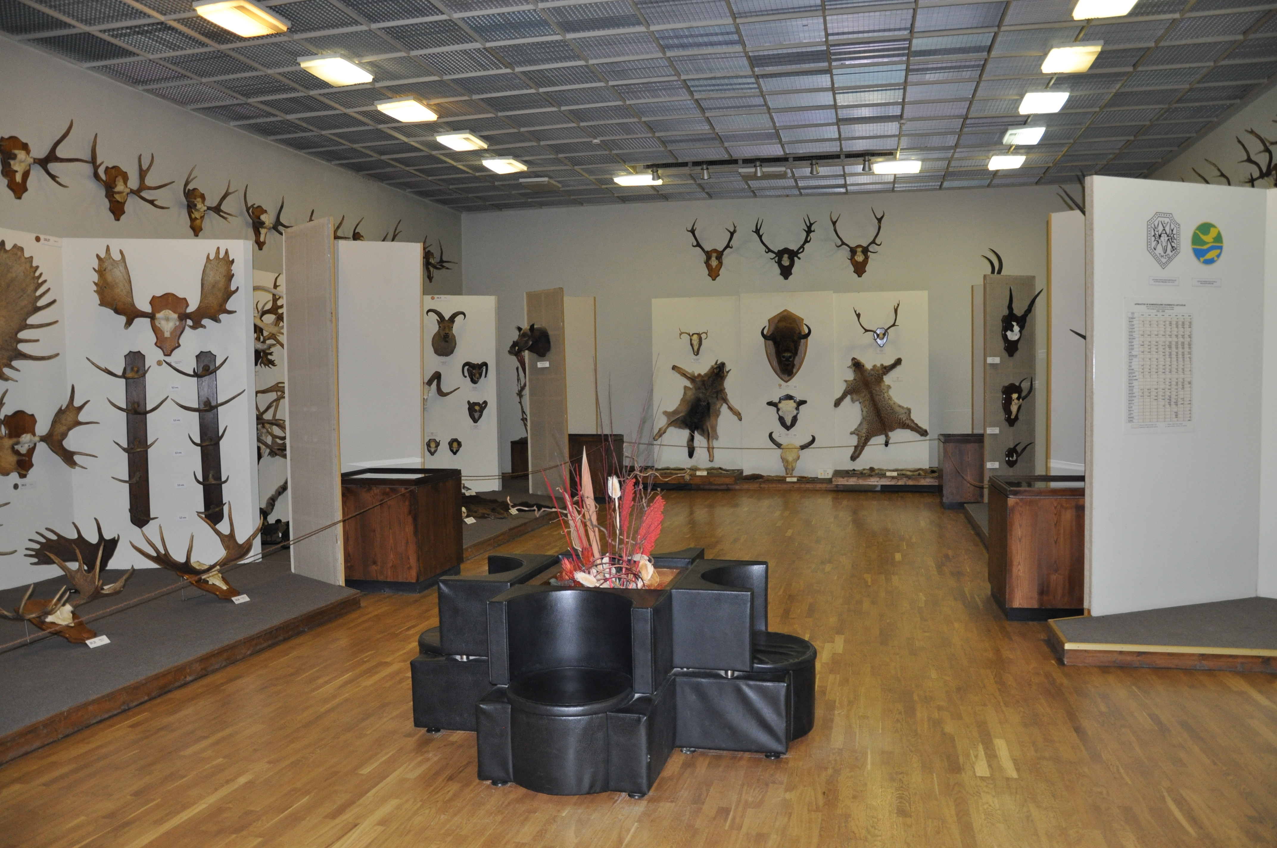 Foyer Museum Zoo : File kaunas zoo museum g wikimedia commons
