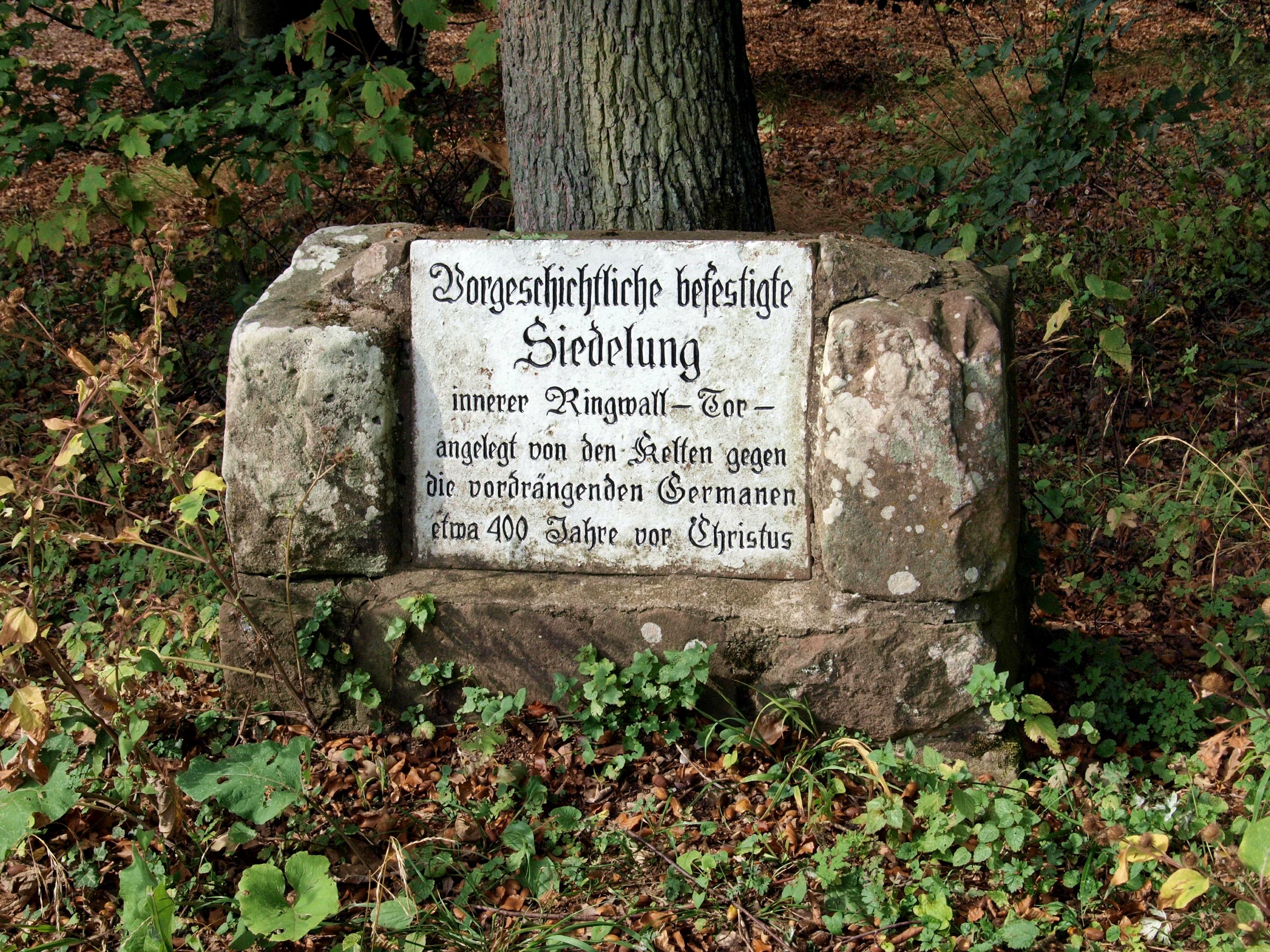file keltischer ringwall auf dem heiligenberg bei heidelberg