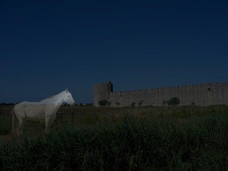 Sans Atout Et Le Cheval Fantôme Wikipédia