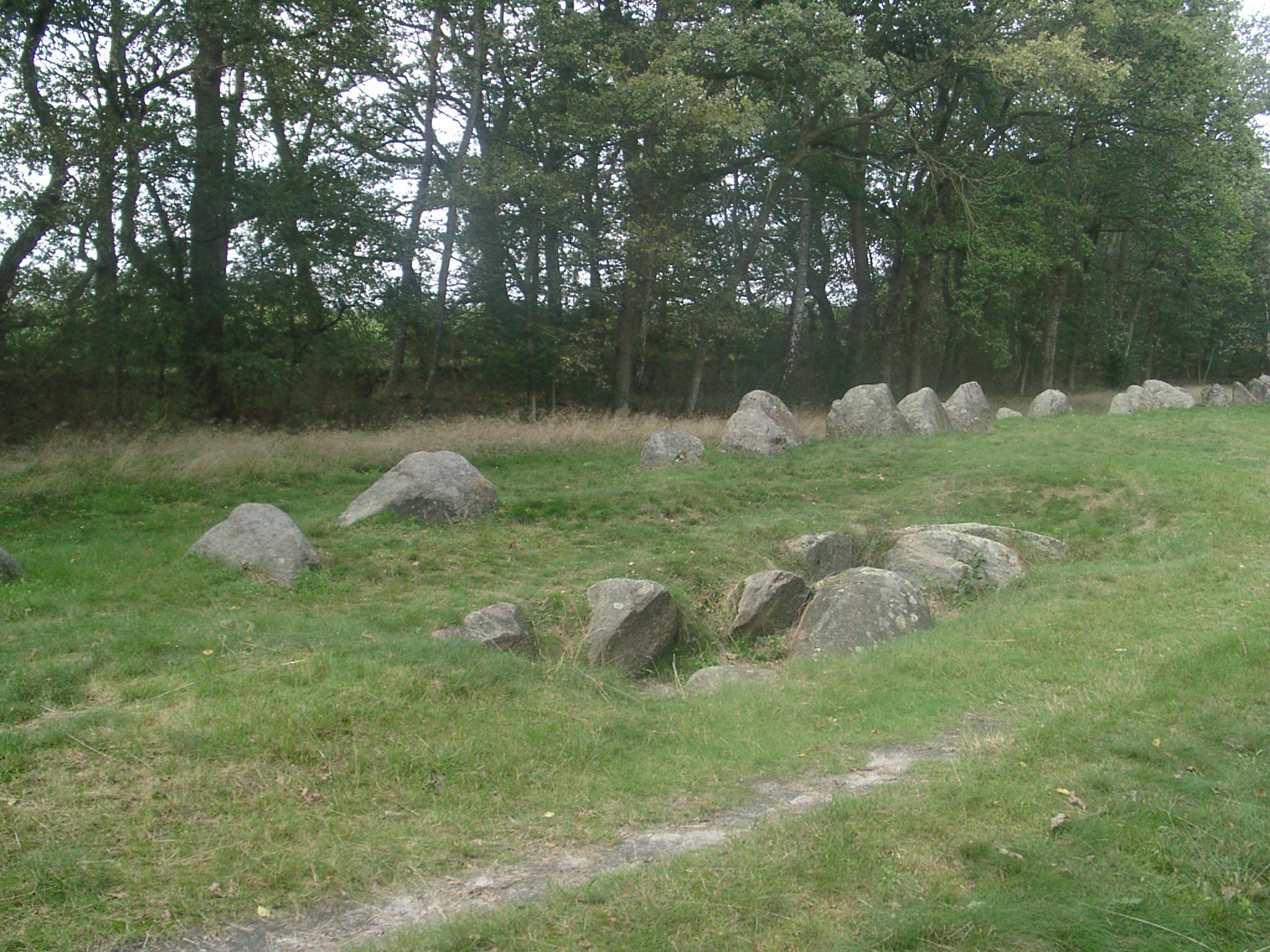 Megalithkultur wildeshausen 2011 022.jpg