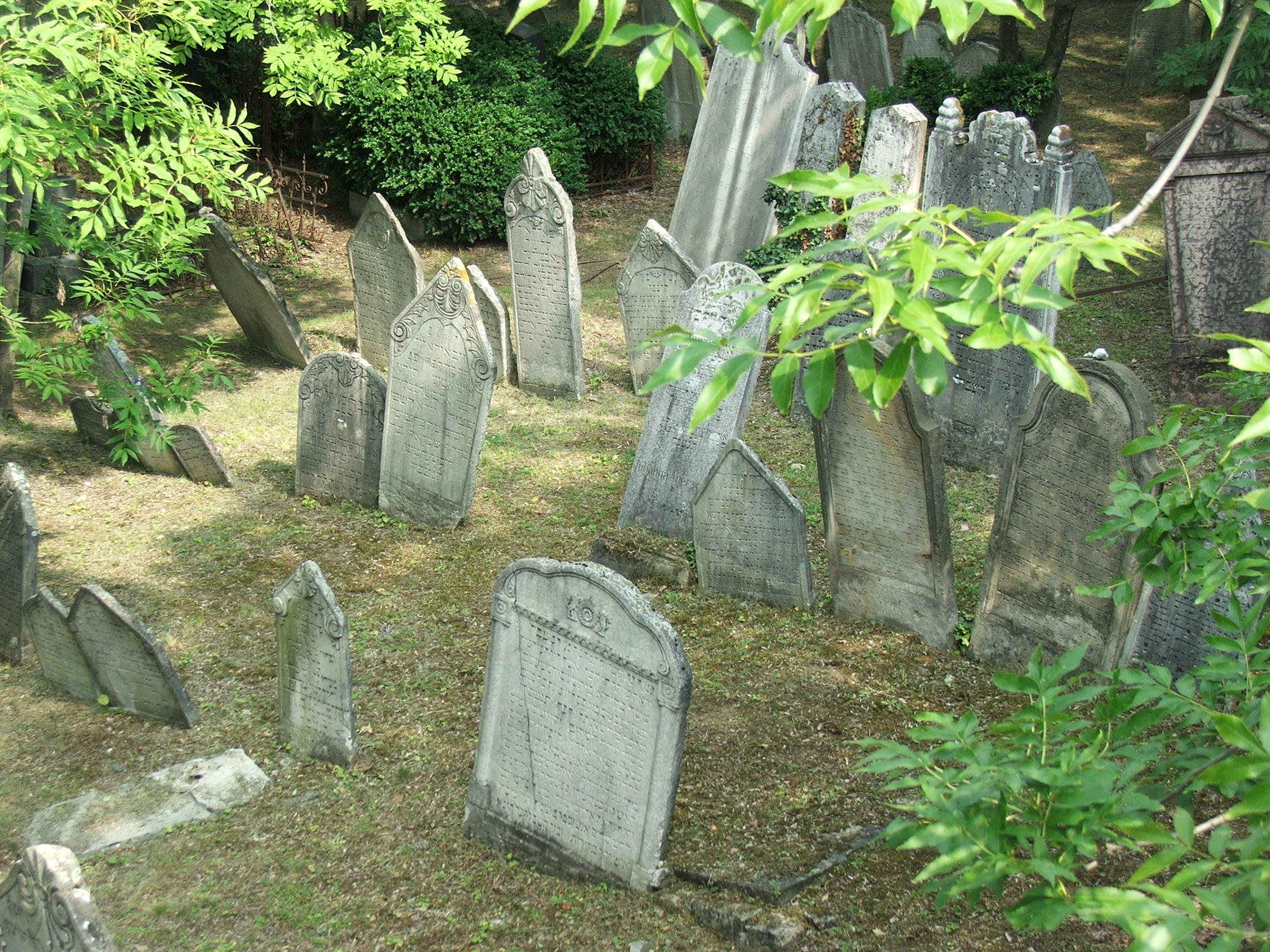 File:Mikulov jewish cemetery 2941.JPG - Wikimedia Commons