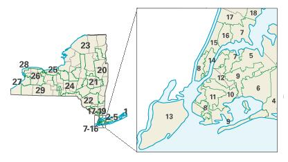 New York congressional districts
