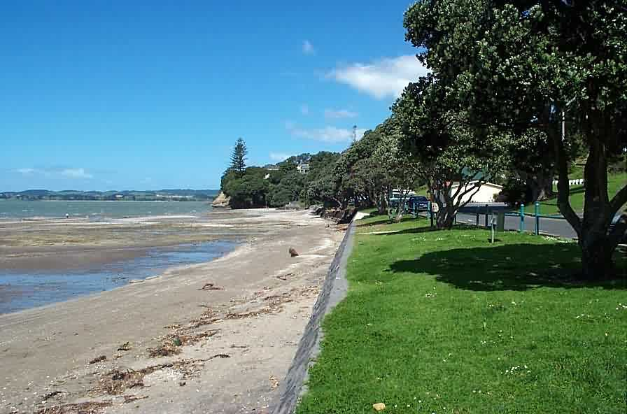 Online dating bay area in Auckland