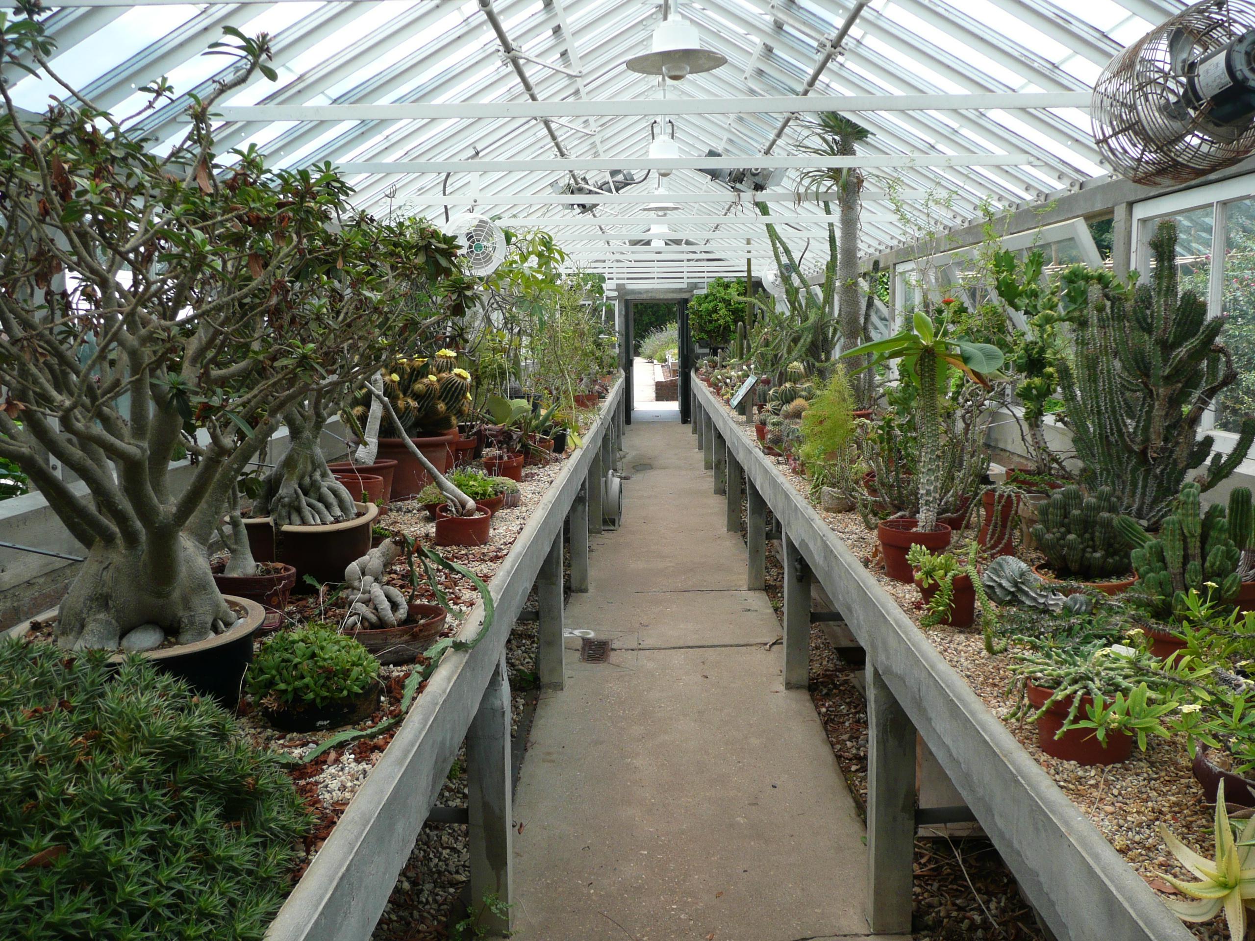 File New Orleans Botanical Garden Greenhouse
