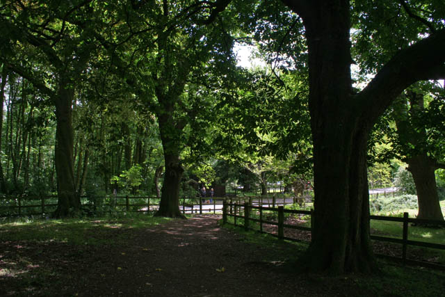 On the edge of Bestwood Country Park - geograph.org.uk - 1340470