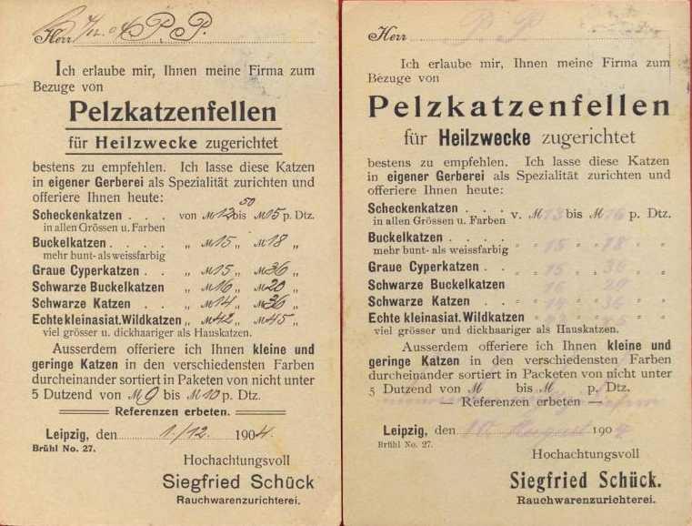 Dateipelzkatzenfelle Angebote Der Firma Siegfried Schück Leipzig
