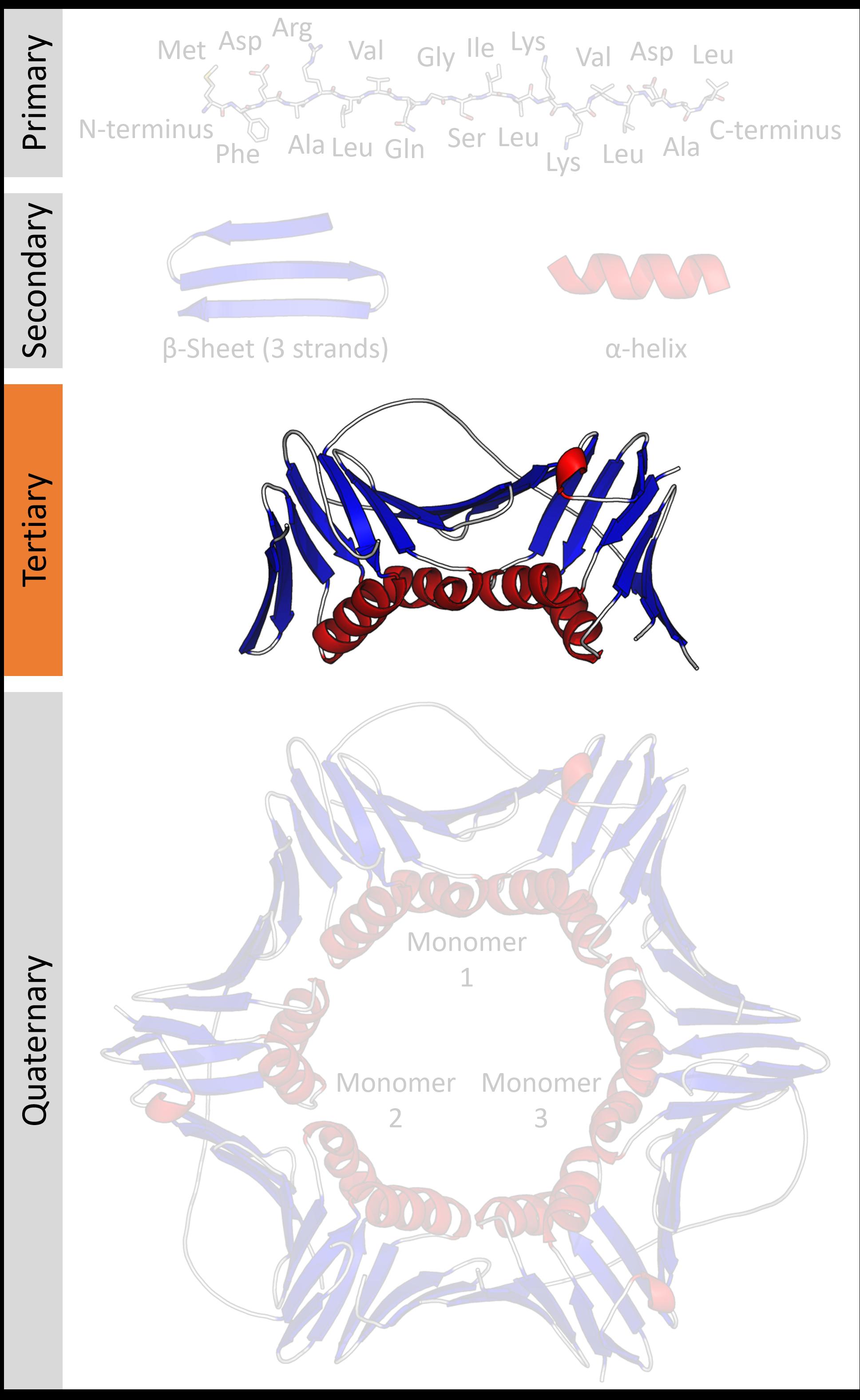 Protein tertiary structure prediction pdf
