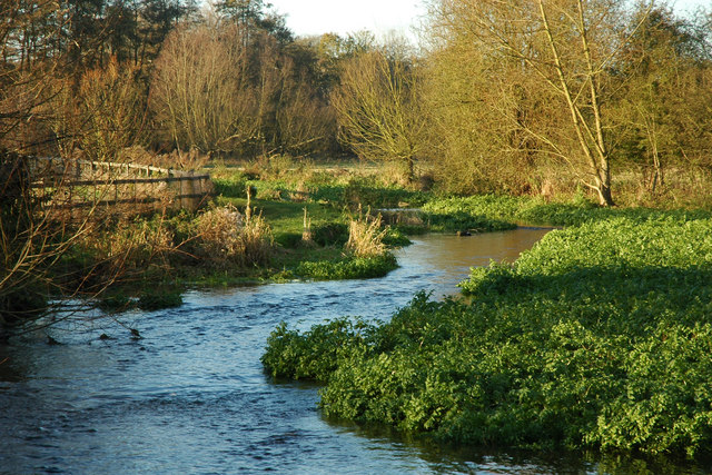 River Chess - geograph.org.uk - 411356