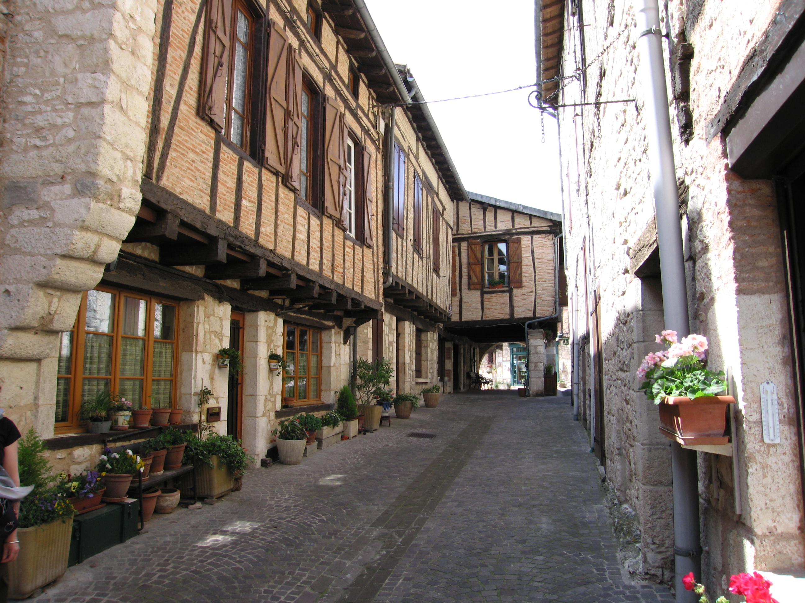 Castelnau de montmiral is a commune in the tarn department in southern