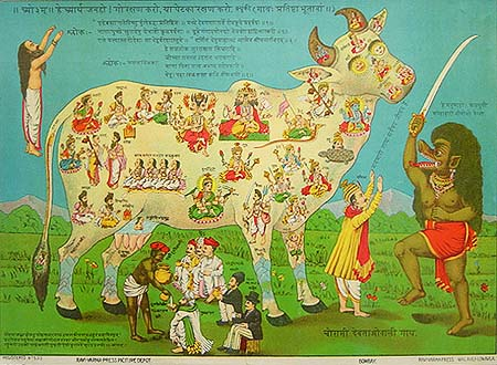 Chaurasi Devataon-wali Gai, or 'The Cow with 84 deities' by Raja Ravi Varma / Ravi Varma Press (1897, Life: 1848-1906) [Public domain or Public domain], via Wikimedia Commons