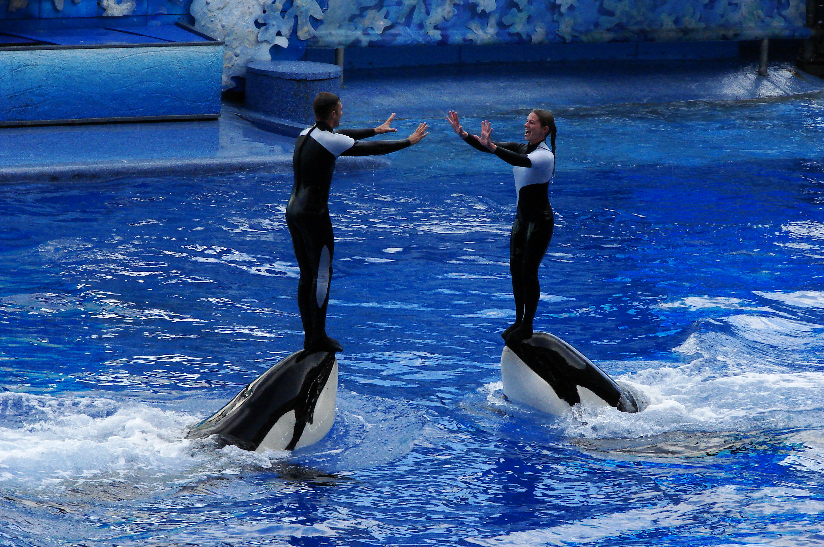 sea world orlandi