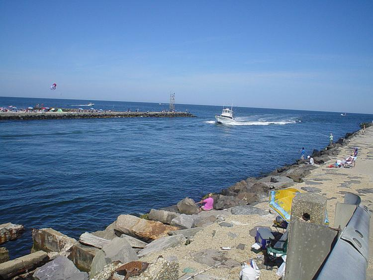 Shark river inlet wikipedia for Private fishing charters nj