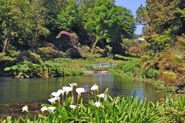 Trebah Gardens - geograph.org.uk - 823362