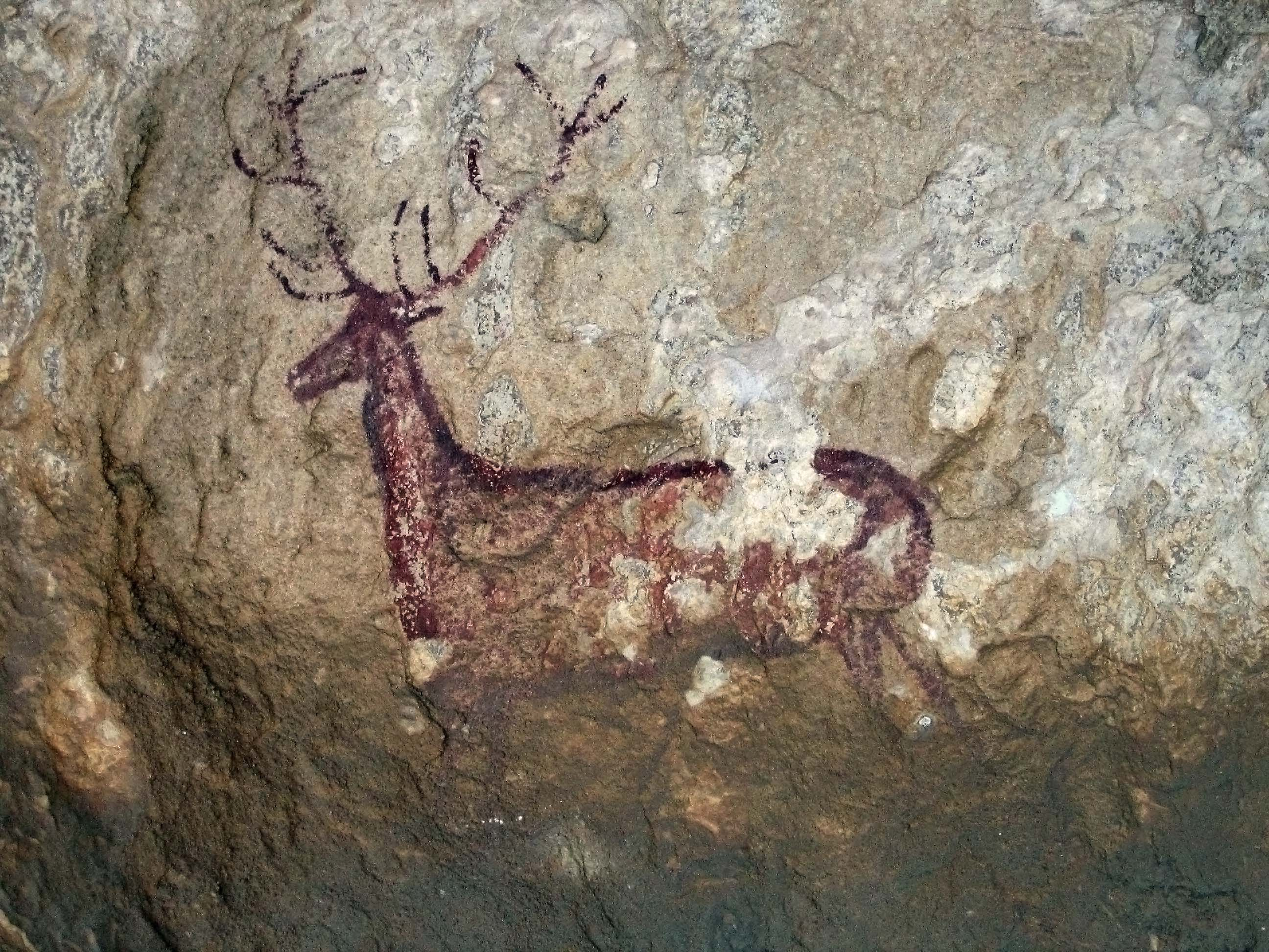 Pitture rupestri del bacino del Mediterraneo nella penisola iberica -  Wikipedia