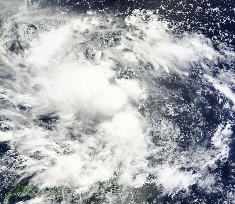 Tập tin:Banyan-11-Oct-2011.jpg