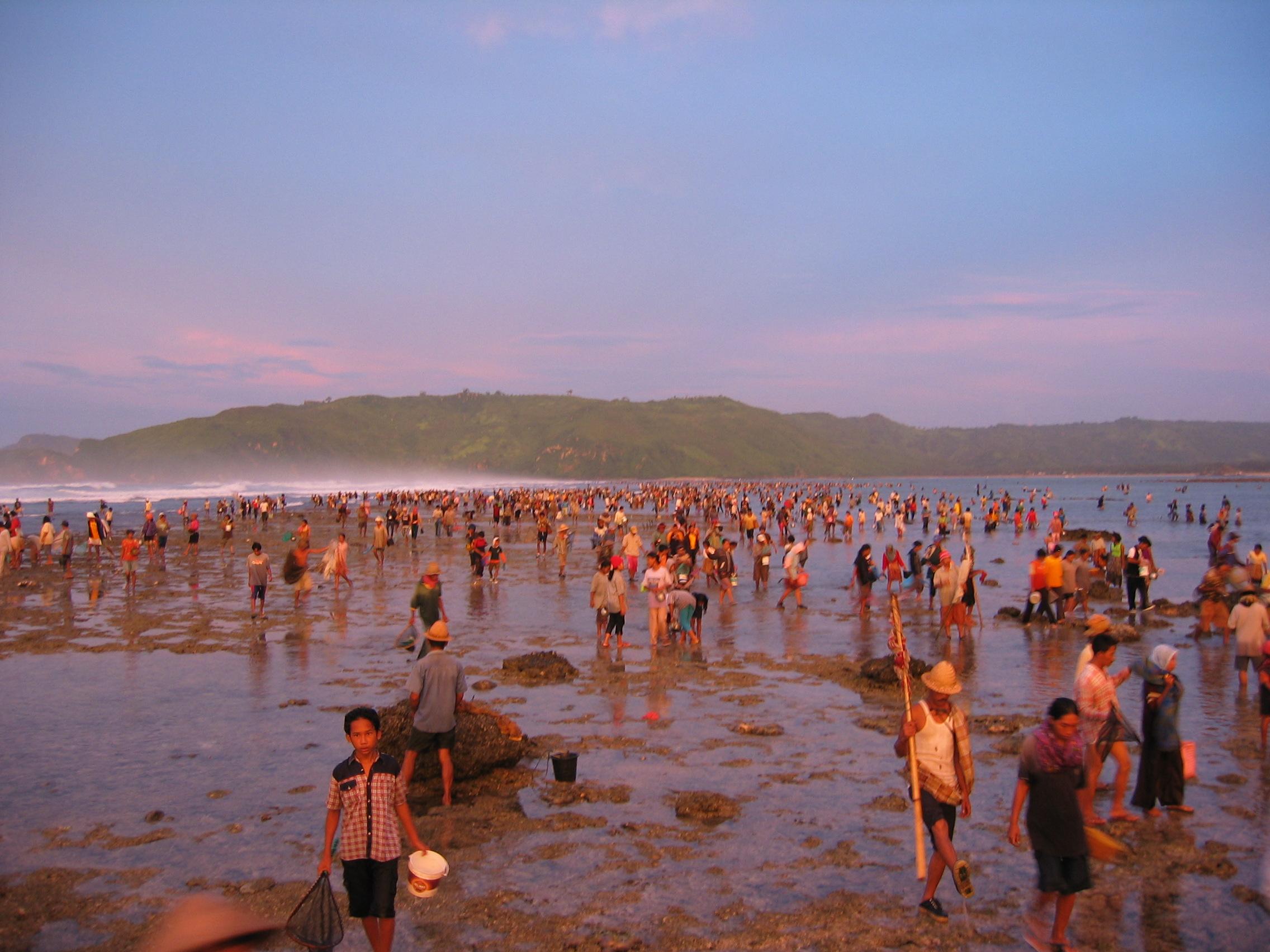 bau nyale Bau nyale merupakan tradisi turun temurun dalam tradisi ini, ribuan orang  menangkap cacing laut di sepanjang pantai pulau lombok.