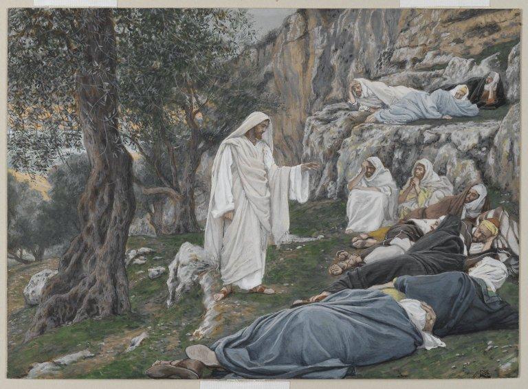 DISCIPULOS A DESCANSAR
