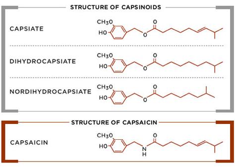anti inflammatory mechanism of steroids