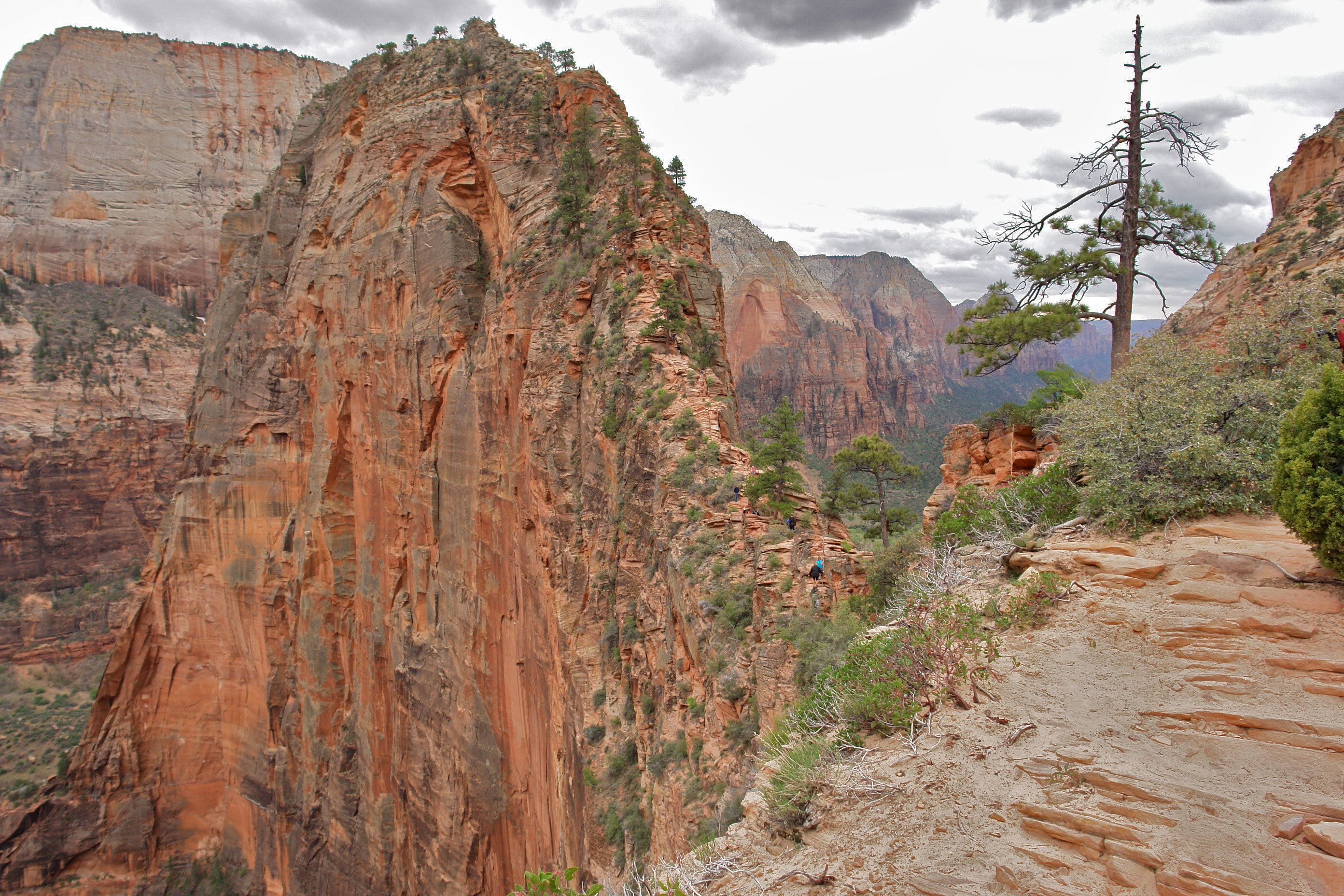 Angels Landing Zion National Park Deaths