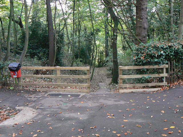 Down to the river - geograph.org.uk - 1555494