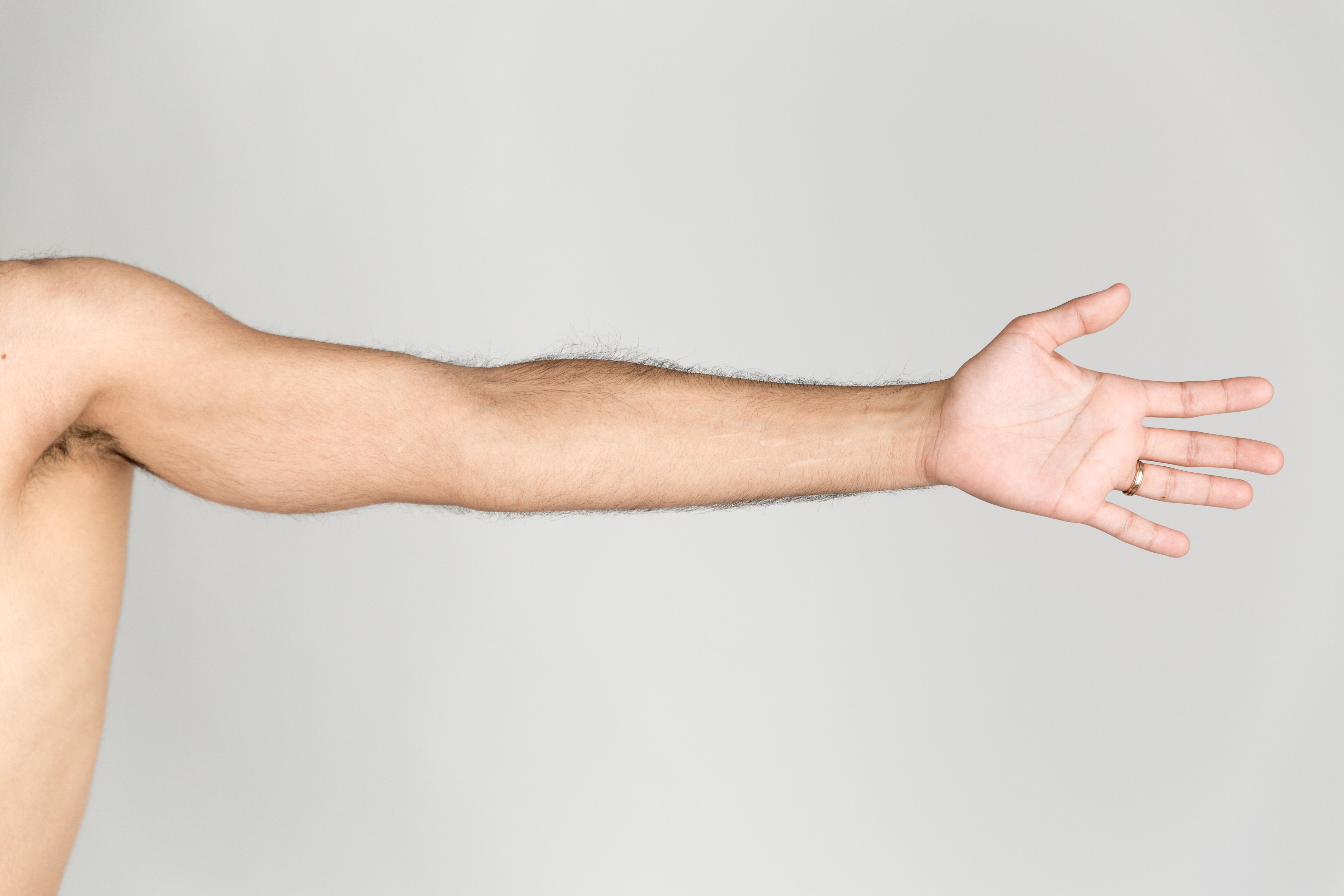 file extended arm jpg wikimedia commons