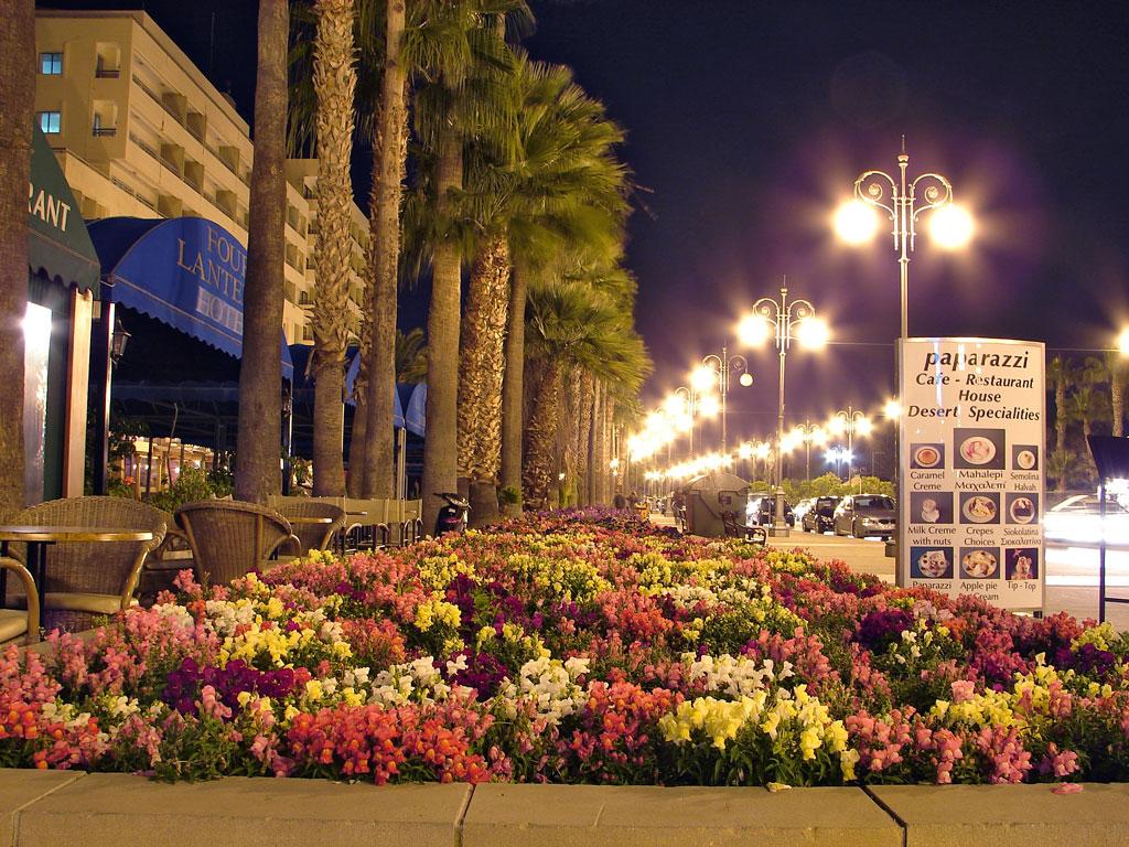 Larnaca Finikoudes - Cyprus