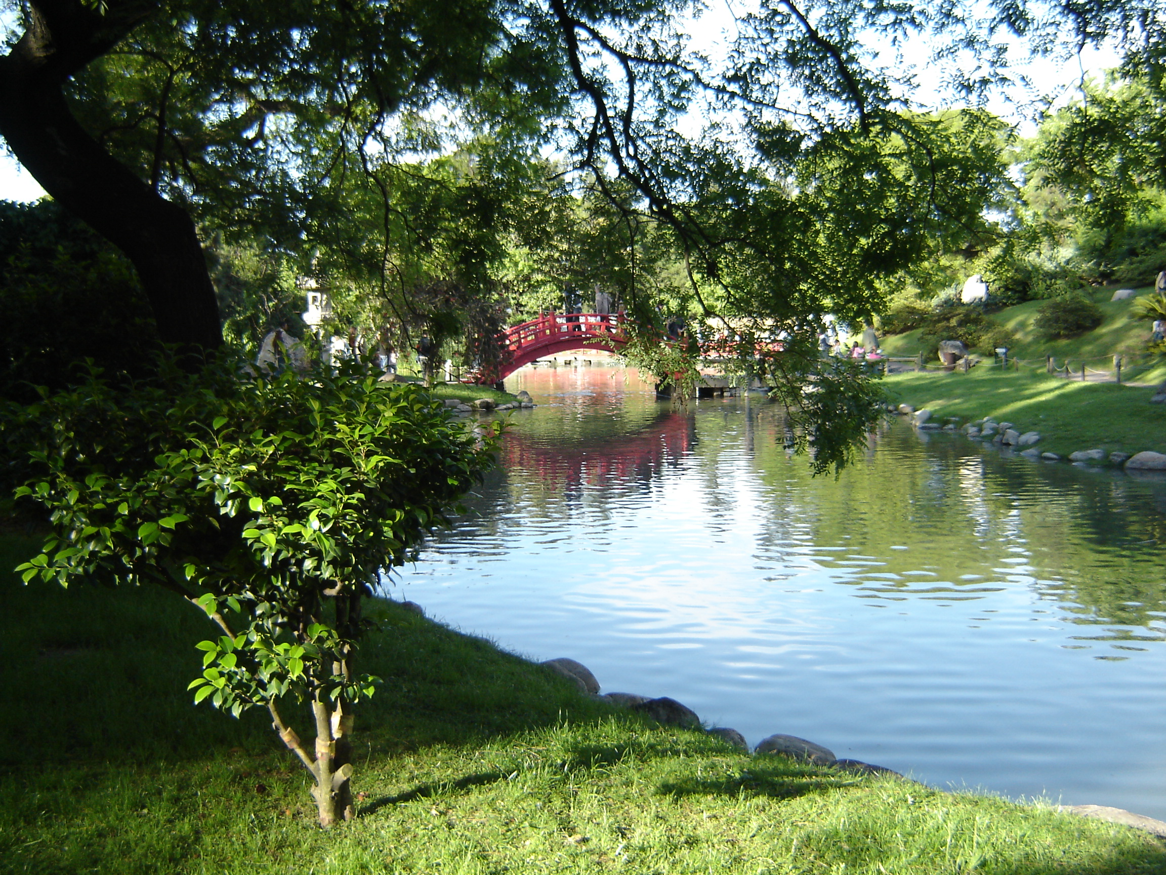 Fotos del jardines taringa for Fotos de jardines