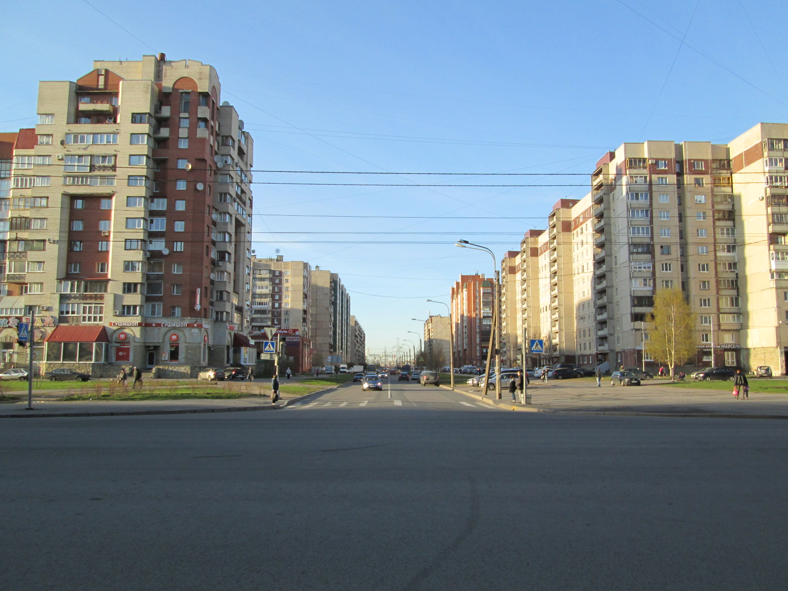 prostitutki-peterburg-prospekt-veteranov