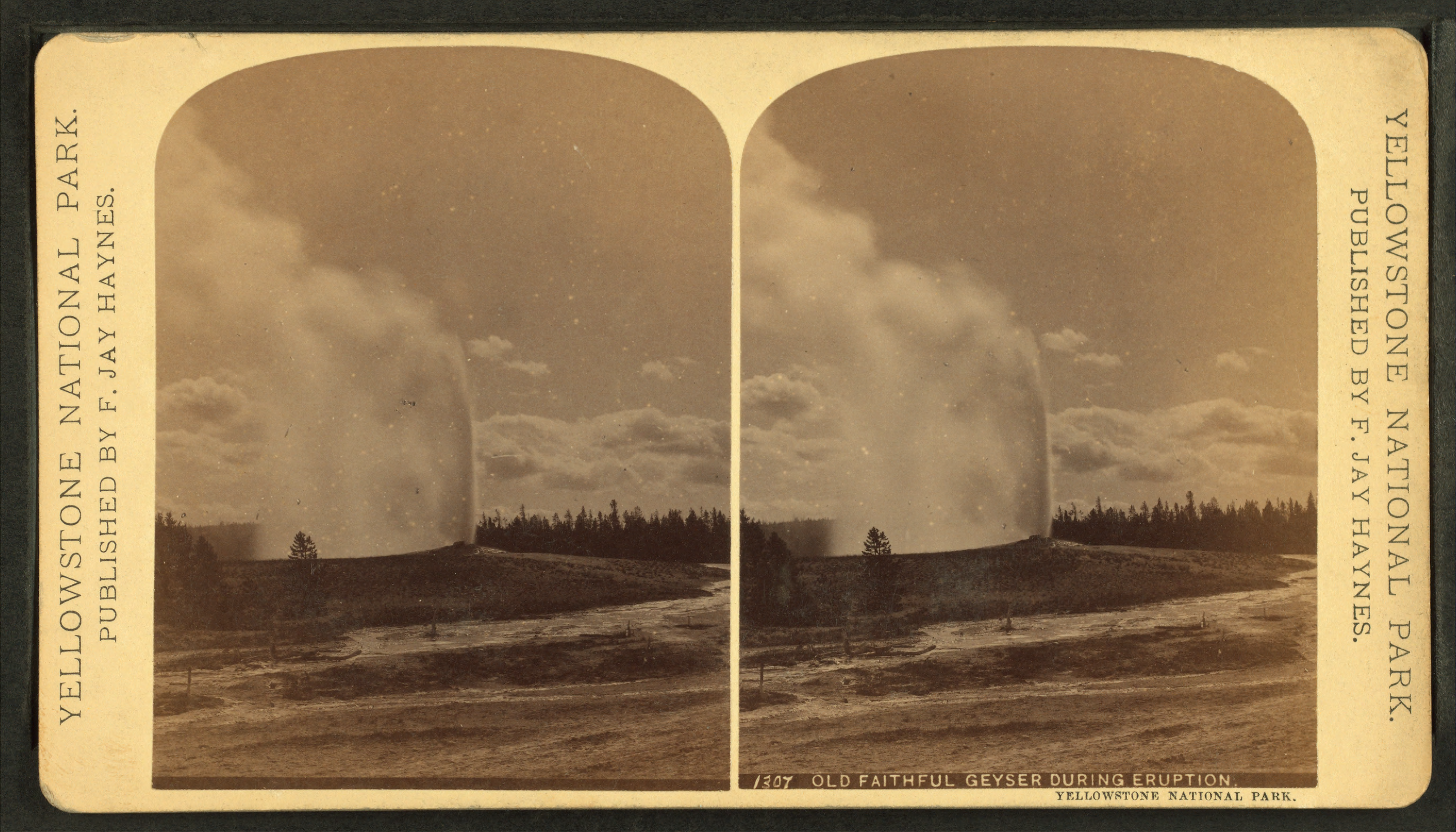 Old Faithful Geyser During Eruption Yellowstone National Park By Haynes Jay 29 How To Reduce Size Of
