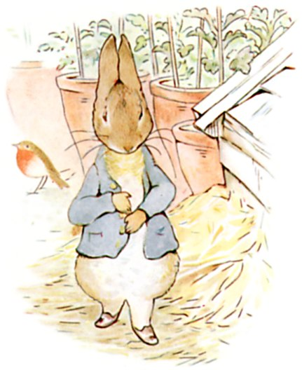https://upload.wikimedia.org/wikipedia/commons/6/6d/PeterRabbit9.jpg
