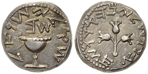Archivo:Silver shekel - First Jewish Revolt, 2nd year.jpg
