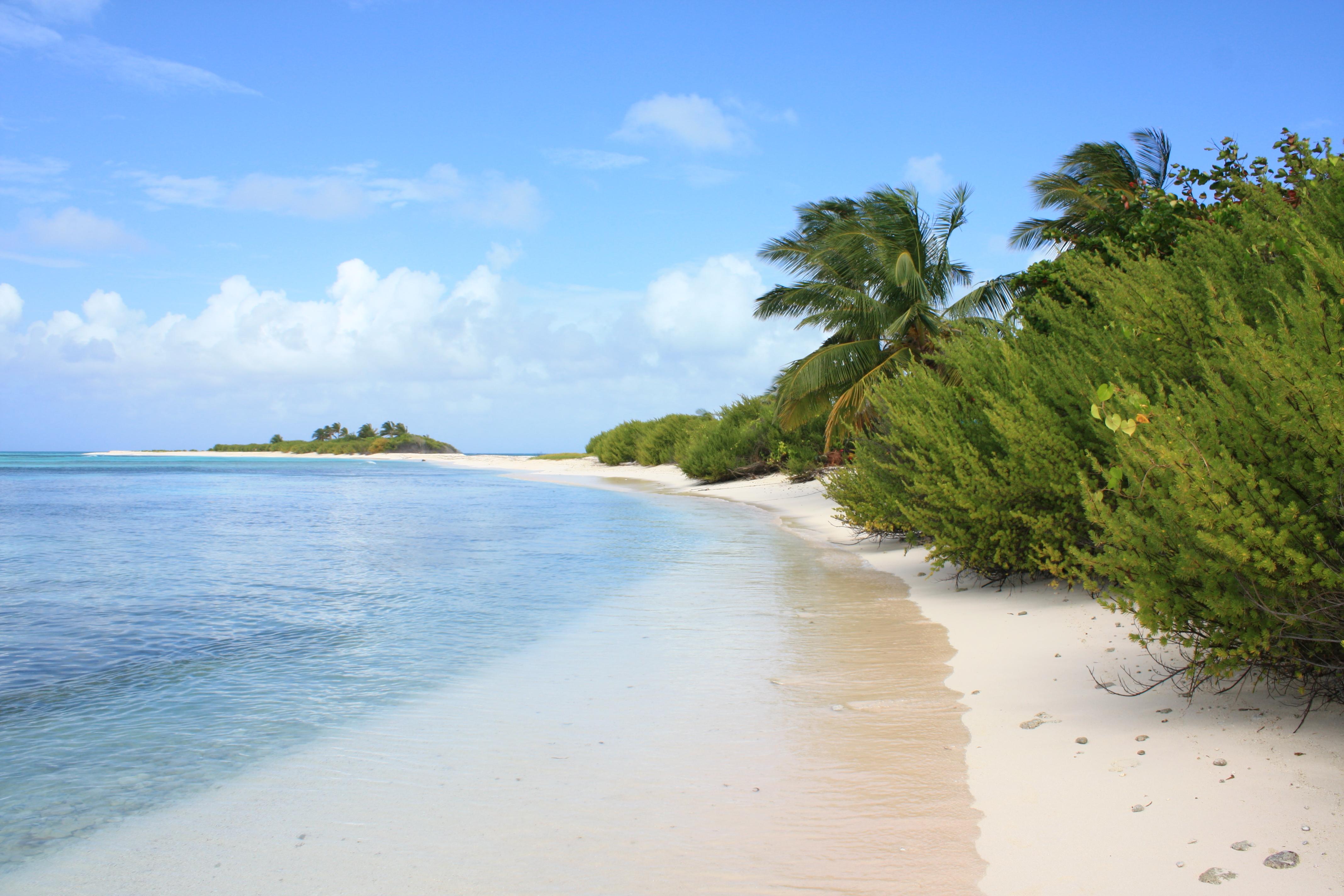 Negyvenama sala online dating